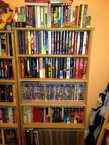 bookshelves2_stock